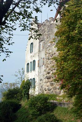 Nr. 2610 / 05.10.2014 / Schloss Wellenberg, Felben Wellhausen / 6000 x 4000 / JPG-Datei