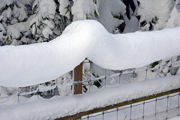 2019, Woche 3, nur noch Schnee