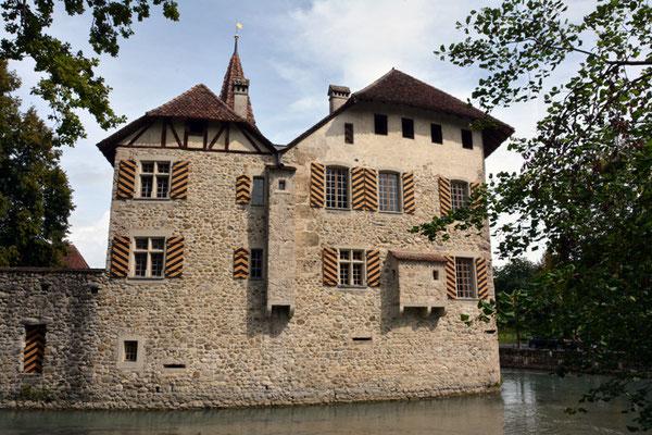 Nr. 2555 / 09.08.2014 / Schloss Hallwyl, Seengen / 6000 x 4000 / JPG-Datei