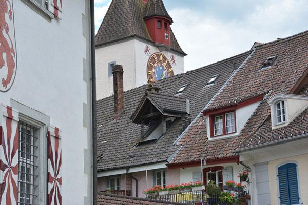 Nr. 134 / 29.05.2014 / Bremgarten /6000 x 4000 / JPG-Datei