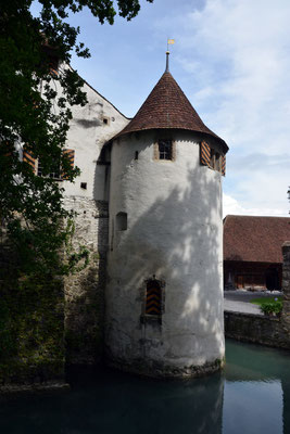 Nr. 2554 / 09.08.2014 / Schloss Hallwyl, Seengen / 6000 x 4000 / JPG-Datei
