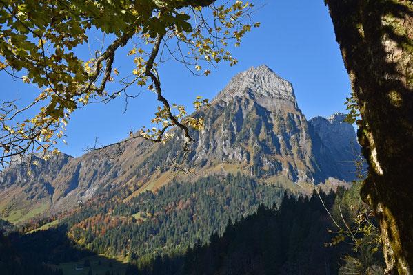 Nr. 362 / 2017 / Obersee im Kanton Glarus / 6016 x 4000 / JPG Datei