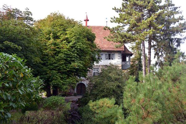 Nr. 2606 / 05.10.2014 / Schloss Wellenberg, Felben Wellhausen / 6000 x 4000 / JPG-Datei