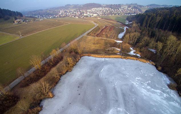 5207 / Woche 7 / Brauiweiher bei Weisslingen
