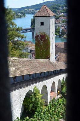 Nr. 2631 / 2014 / Burg, Munot / 6000 x 4000 / JPG-Datei / NEF Datei