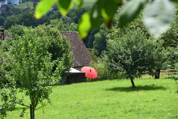 5132 /  Woche 32 / Bauernhof beim Schloss Wildegg