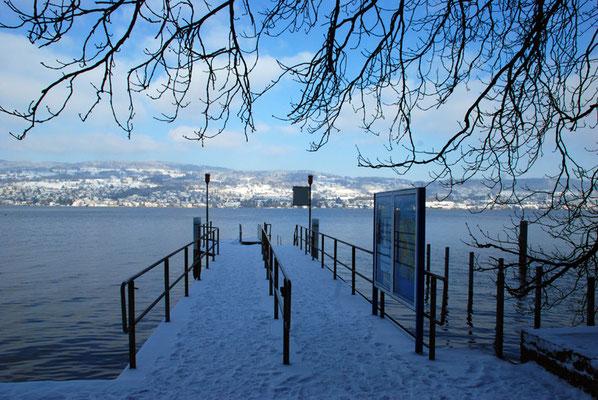 Nr. 311 / 26.12.2010 / Zürichsee, Schiffstation Halbinsel Au / 3872 x 2592 / JPG Datei