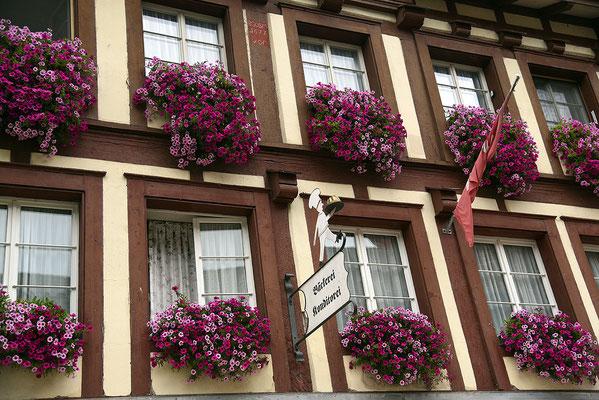 Nr. 138 / 13.06.2015 / Stein am Rhein/ 6016 x 4016 / JPG-Datei