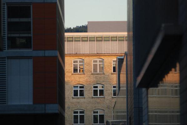 Nr. 2013 / 27.08.2008 / Zürich, Neu-Oerlikon / 3872 x 2592 / JPG-Datei