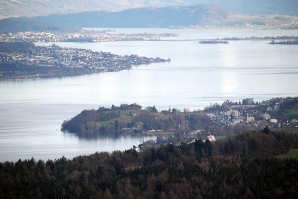 Nr. 305 / 03.01.2012 / Zürichsee, Blick vom Albis Richtung Osten / 3872 x 2592 / JPG Datei
