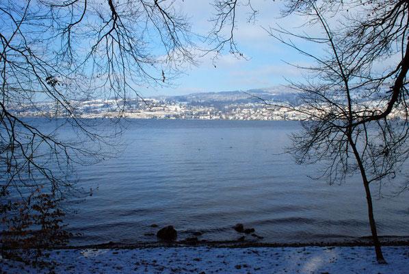 Nr. 313 / 26.12.2010 / Zürichsee,  Blick Richtung Nord / 3872 x 2592 / JPG Datei