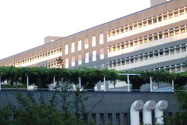 Nr. 2015 / 27.08.2008 / Zürich, Neu-Oerlikon / 3872 x 2592 / JPG-Datei