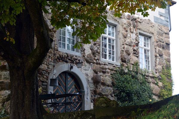 Nr. 2603 / 05.10.2014 / Schloss Wellenberg, Felben Wellhausen / 6000 x 4000 / JPG-Datei