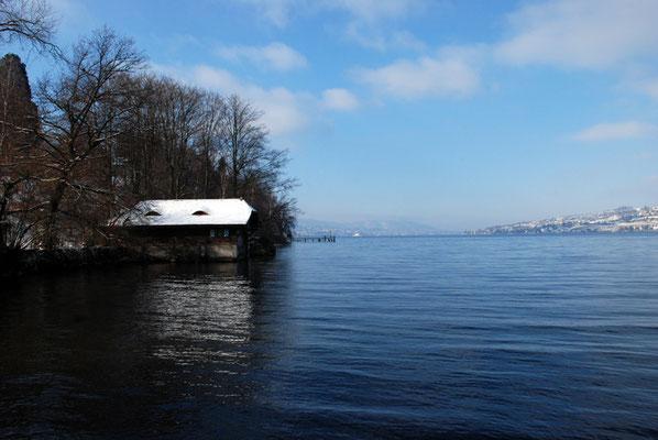 Nr. 310 / 26.12.2010 / Zürichsee, Blick von der Halbinsel Au Richtung West / 3872 x 2592 / JPG Datei