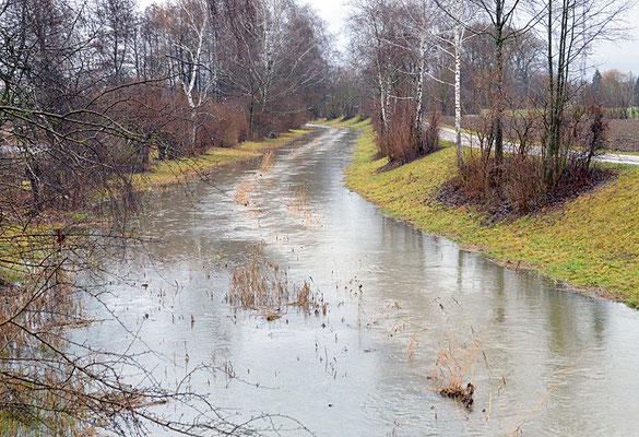 5165 / Woche 5 /  Dielsdorf, Hochwasser im Fischbach