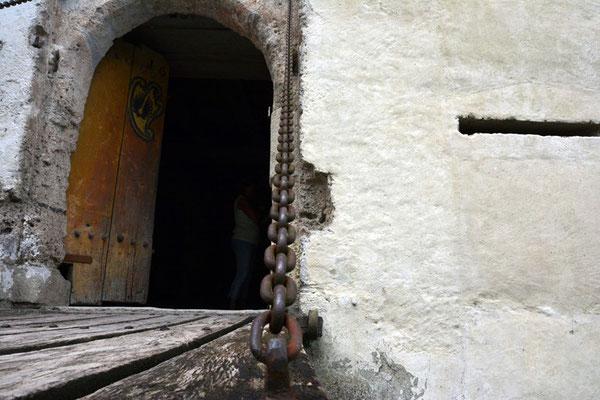 Nr. 2572 / 09.08.2014 / Schloss Hallwyl, Seengen / 6000 x 4000 / JPG-Datei