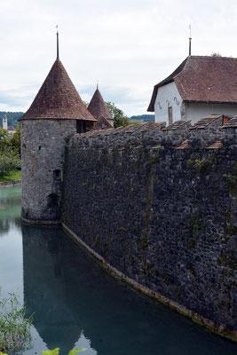 Nr. 2551 / 09.08.2014 / Schloss Hallwyl, Seengen / 6000 x 4000 / JPG-Datei