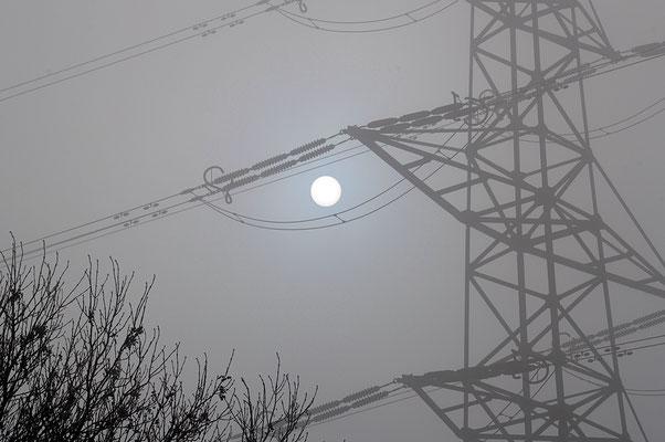5208 / Woche 8 / Buchs ZH, Sonne im Nebel