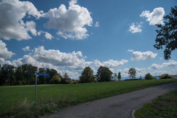 5335 / Wochenbild 35 / Homberg Bassersdorf