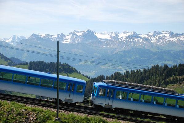 Nr. 2037 / 29.05.2011 / Rigi, Rigibahn/ 3872 x 2592 / JPG-Datei
