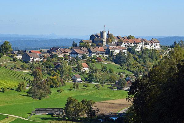 5140 / Woche 40 / Regensberg, Blick von Süden