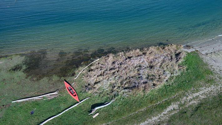 5343 / Wochenbild, Greyerzersee Ufer bei Morlon