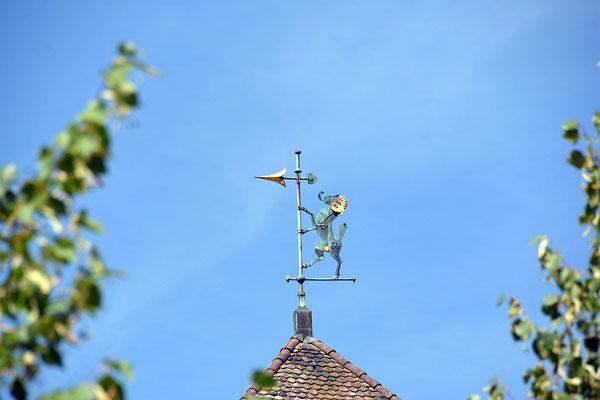 Nr. 306 / August 2014 / Schaffhaussen /6024 x 4008 / JPG/NEF-Datei