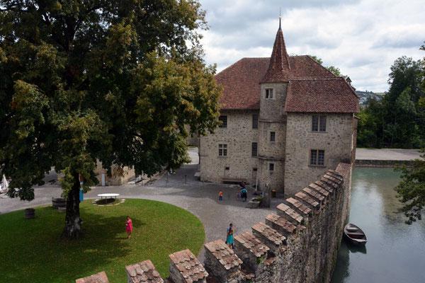 Nr. 2568 / 09.08.2014 / Schloss Hallwyl, Seengen / 6000 x 4000 / JPG-Datei