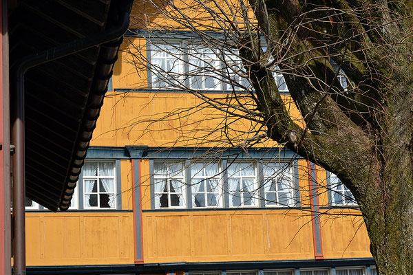 Nr. 210 / 08.03.2015 / Appenzell /6000 x 4000 / JPG-Datei