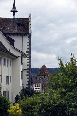Nr. 151 / 13.06.2015 / Stein am Rhein/ 6016 x 4016 / JPG-Datei