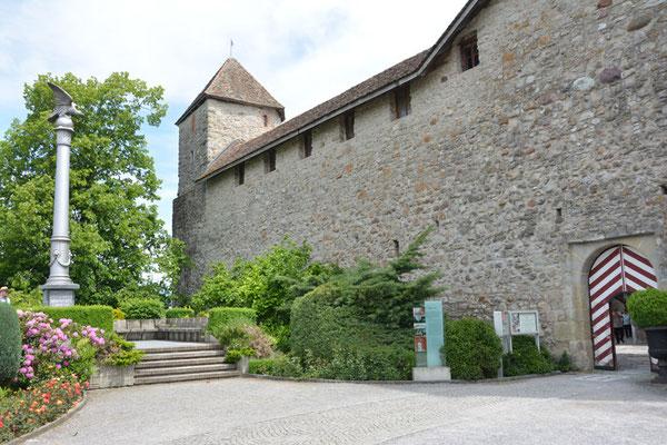 Nr. 2536 / 25.05.2014 / Schloss Rapperswil / 6000 x 4000 / JPG-Datei