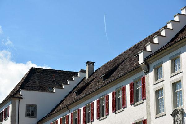 Nr. 3009 / 17.08.2014 / Kloster Rheinau / 6000 x 4000 / JPG-Datei