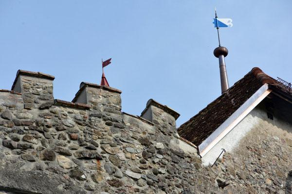 Nr. 2615 / 05.10.2014 / Schloss Wellenberg, Felben Wellhausen / 6000 x 4000 / JPG-Datei