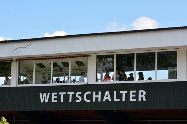 Nr. 2531 / 07.09.2014 / Dielsdorf, Pferde-Rennbahn / 6000 x 4000 / JPG-Datei
