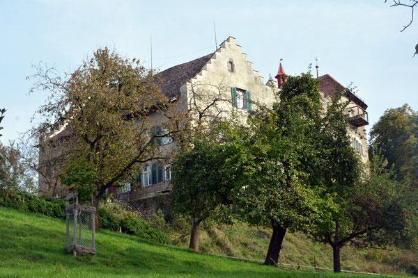 Nr. 2616 / 05.10.2014 / Schloss Wellenberg, Felben Wellhausen / 6000 x 4000 / JPG-Datei