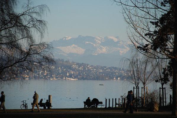Nr. 301 / 24.02.2008 / Zürichsee, Mythen-Quai, Blick Richtung Nord-Ost / 3872 x 2592 / JPG Datei
