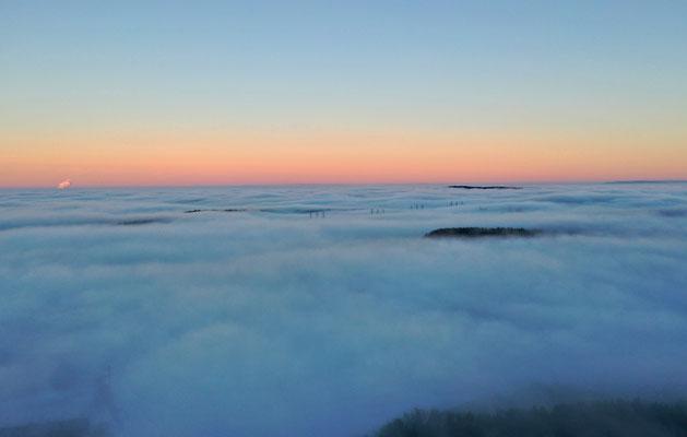 5351 / Wochenbild, Nebel über dem Mittelland, Drohnenaufnahme