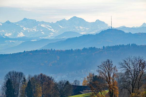 5248 / Woche 48 /  Blick von Regensberg, Richtung Alpen