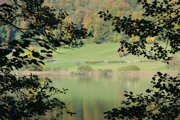 Nr. 245 / 19.10.2013 / Türlersee, Blick Richtung Nord / 6016 x 4000 / JPG Datei