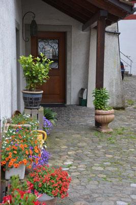 Nr. 144 / 29.05.2014 / Bremgarten /6000 x 4000 / JPG-Datei
