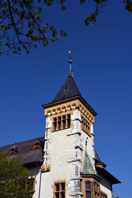 Nr. 353 / 2019 / Solothurn  / 6000 x 4000 / JPG-Datei