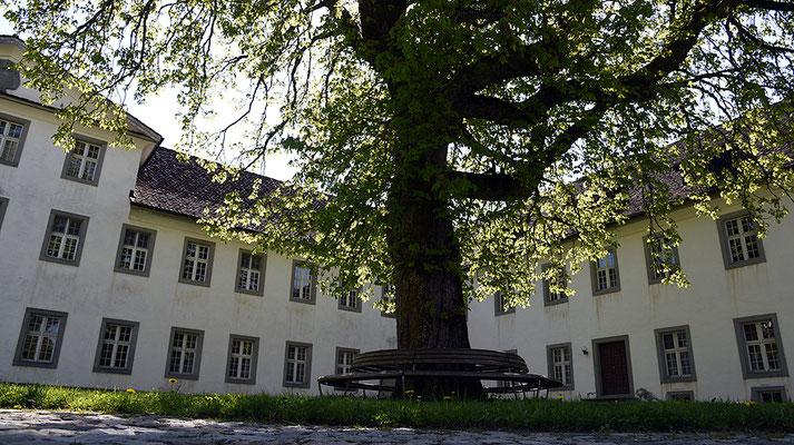 Nr. 3036 / 2016 / Kloster Einsiedeln / 6000 x 4000 / JPG-Datei