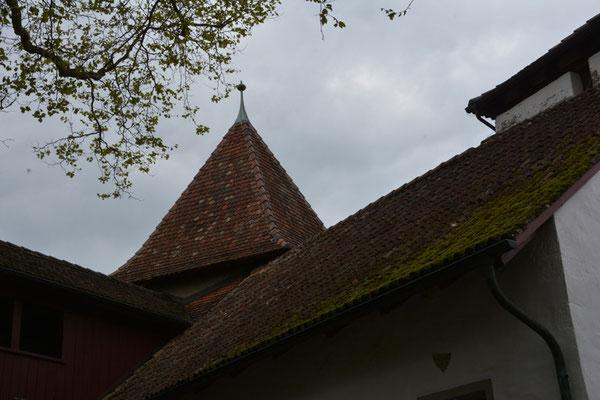 Nr. 2520 / 04.05.2014 / Kyburg / 6016 x 4000 / JPG-Datei