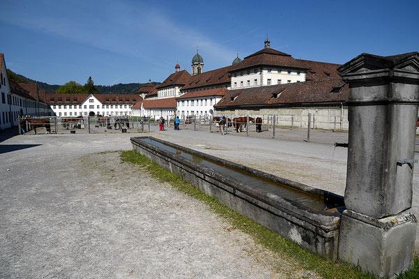 Nr. 3047 / 2016 / Kloster Einsiedeln / 6000 x 4000 / JPG-Datei