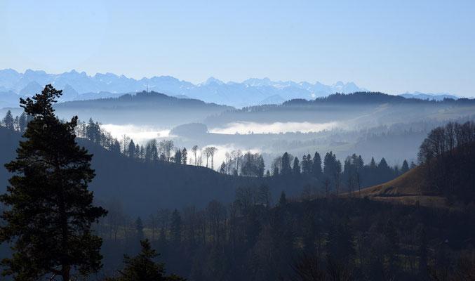 2020 Woche 2, Hulftegg, Blick in die Bergen