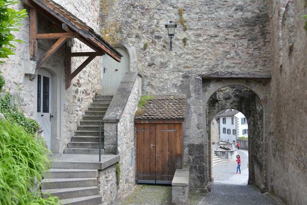 Nr. 2535 / 25.05.2014 / Schloss Rapperswil / 6000 x 4000 / JPG-Datei