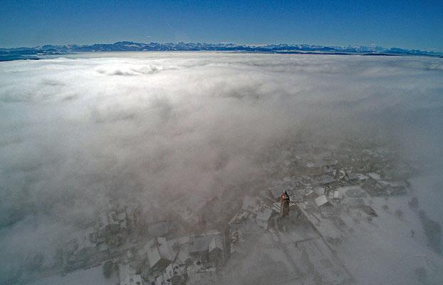 5311 / Woche 11 /  Brütten im Nebel