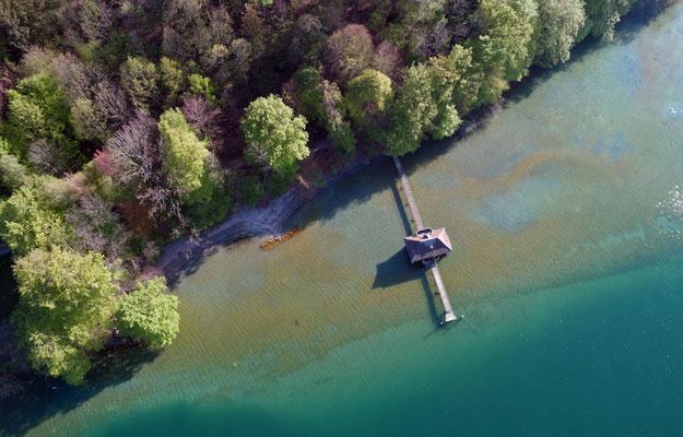 2019, Woche 18, Drohnenaufnahme Halbinsel Au, Zürichsee