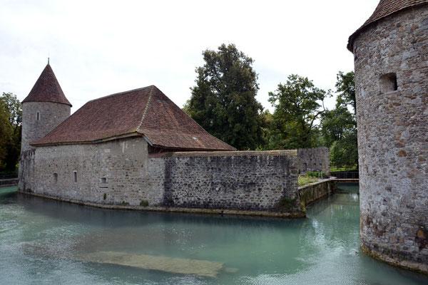 Nr. 2550 / 09.08.2014 / Schloss Hallwyl, Seengen / 6000 x 4000 / JPG-Datei