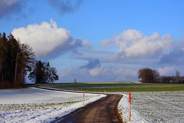 5164 / Woche 4 /  Gerlisberg, Blick Richtung Norden